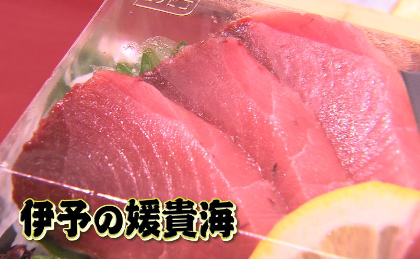 大阪でスマ売り込み.png